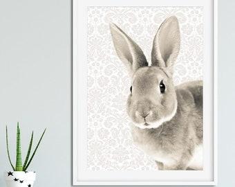 Soft and Sleepy Bunny Print