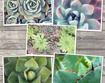 Succulent Photo Notecard Set, Coworker Gift, Succulent Card, Coworker Gift, Hostess Gift, Blank Greeting Card, Photo Greeting Card