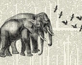 elephant couple page print