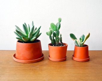 Terracotta mini planters - A set - Set of 3