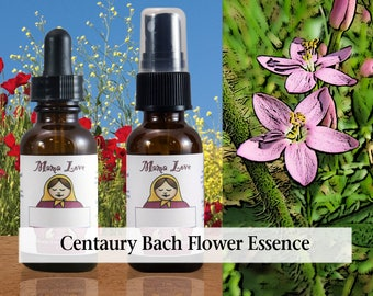 Centaury Bach Flower Essence, Dropper or Spray for the Ability to Help Others While Still Being Able to Say No