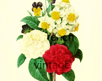 Camellia Bouquet Large Size, Pierre Redoute, Botanical Print, French country art, French home decor