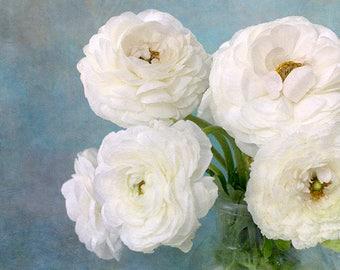 White Flower Still Life Photography,  Ranunculus Print,  Floral Wall Decor, Fine Art Photography