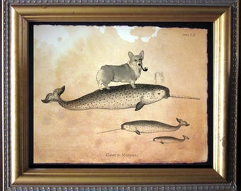 Welsh Corgi Dog Riding Narwhal - Vintage Collage Art Print on Tea Stained Paper - dog art - dog gifts -- father's day gift- graduation gift