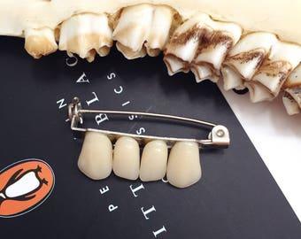 Human tooth incisor brooch