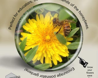 Beekeeping Magnet, Pin or Pocket Mirror, 2.25 Inch, Great for bee keepers and environmentalists