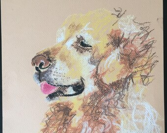 Original soft pastel golden retriever drawing