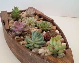 Boat Succulent Planter
