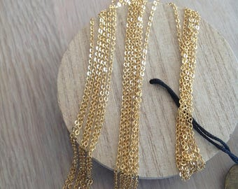 Chain gang 40 cm 2mm Super shiny gold plated high quality