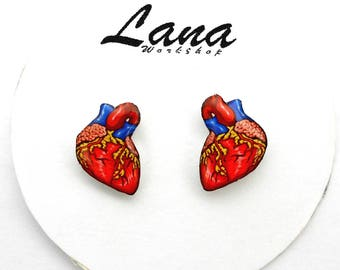 Anatomic Heart Earrings, Anatomy Organ, human heart, valentine earrings, anatomical heart stud earrings