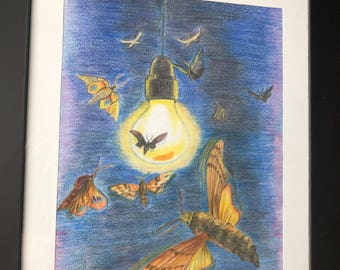 Moth at night painting (pastel)