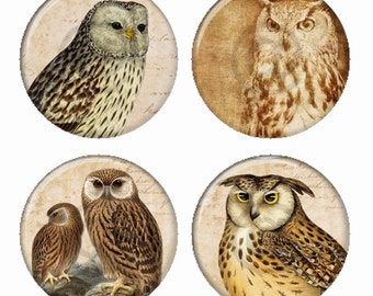 Vintage Barn Owls Sepia Magnets or Pinback Buttons or Flatback Medallions Set of 4