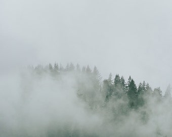 """Mountain Fog and Trees Photo, Pacific Northwest, Evergreen Trees, Fine Art Landscape Photography, Adventure, """"Mountain Trees and Fog"""""""