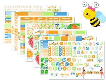 Fruit Smoothie | Weekly Kit | Erin Condren | Recollection | Happy Planner