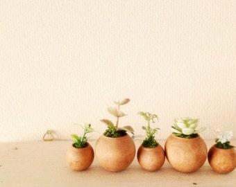 chubby flower pot