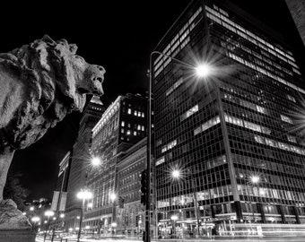 Art Institute Lion IV