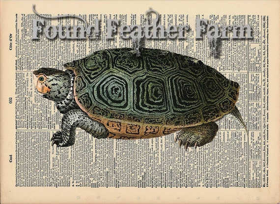 """Vintage Antique Dictionary Page with Antique Print """"Turtle Two"""""""