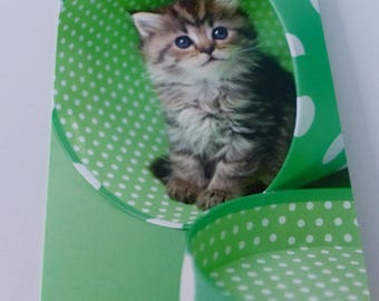 Cat in a card box green polka dot card lined with envelope