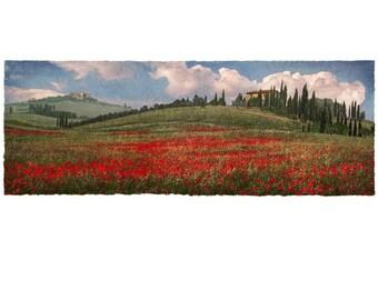 Poppies Vista, 7x18 Fine Art Photographic Print