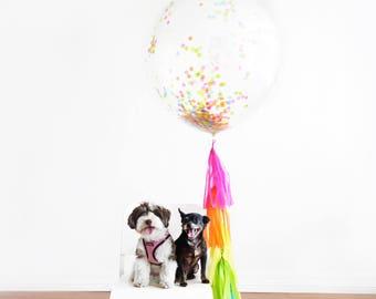 Confetti Balloon with Tassels - Jumbo Round Balloon with Tassel Garland