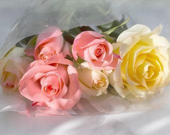 Roses Art Print, Nursery Decor,  Rose Photograph, Flower Photography,  Bedroom Wall Art