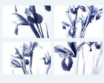 Cyanotype Photography Print Set, Four Iris Art Prints, Abstract Art, Flower Photography, Navy Blue Wall Decor