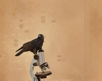 Science Crow art print // pigment print, archival, 8x10 // crow on microscope // kids' room, nerdy gift, geeky gift