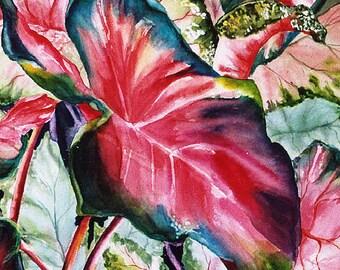 Caladium II - watercolor print ACEO E914, Red Green collectible, Art card watercolorsNmore