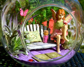 "Fairy Garden Terrarium Kit with Bench ~ 7"" Air Plant Terrarium Kit ~ Bench ~ Ladybug and Butterfly ~ Picket Fence~ Sand Choice ~ Gift Idea"