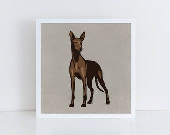 Pharaoh Hound, Pharaoh Hound Art Print, Pharaoh Hound Poster, Dog Art, Pharaoh Hound Print, Dog Print, Dog Art