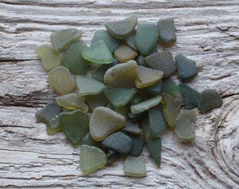 Tiny Olive Green Sea Glass Bulk Beach Glass for Sale