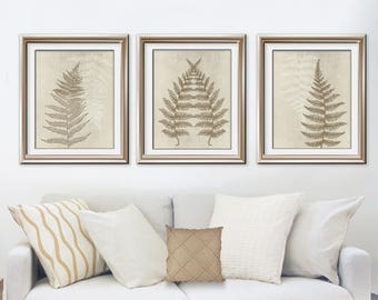 Ferns of Tuscany (Series B3) Set of 3 - Art Prints (Featured in Bark and Stone Wash) Nature Woodland Inspired