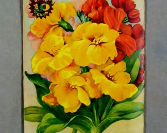 c. 1920's WALLFLOWER Seed Packet, Erie Seed Co. Fredonia NY, Stecher Lithograph Co, Rochester NY, Country Store, Conneaut Lake Pa. Unopened