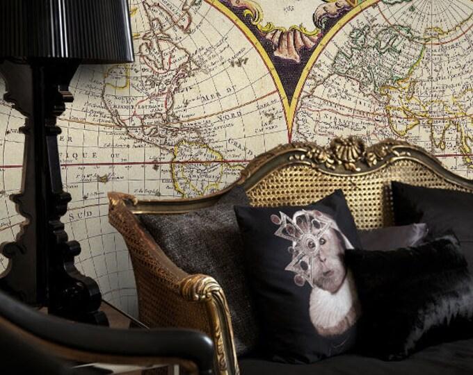 Planisphere Wallpaper - World Map Wallpaper - Large World Map Wallpaper Mural