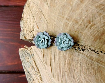 Succulent earrings studs, green succulent, polymer clay jewelry, succulent stud, polymer clay earrings