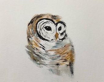 Barred Owl watercolor, original painting, owl painting