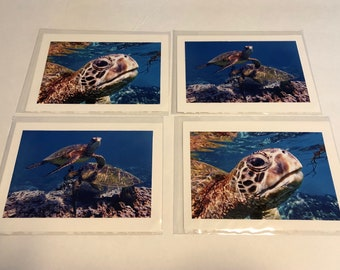 Sea Turtle Blank All Occasion Card (4)