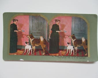 Stereo View Card with Dogs Ready for Breakfast Antique Stereograph Card Vintage 1898 Ingersoll Stereoview Card No 65 Dogs Period Costume