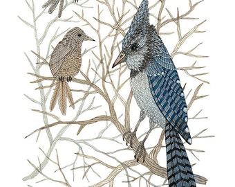 GROßE Blau-Jay Print, Giclée Kunstdruck, Vogelkunst, blaue Vögel, Aquarell Vogelkunst, Winter Vogelkunst, 13 x 19