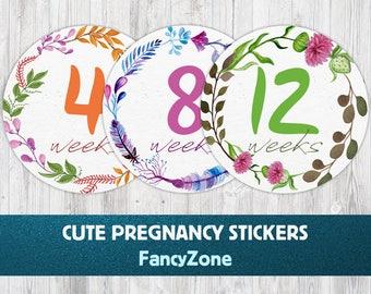 Weekly Belly Bump Sticker, Flower Pregnancy Stickers, Pregnancy Belly Stickers, 40 Weeks Flower Stickers, Monthly Pregnancy, Pregnancy Belly