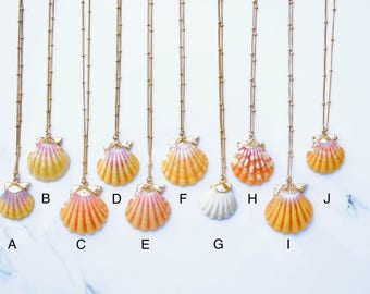 24k Gold-dipped Hawaiian Sunrise Shell Necklace - Satellite Chain
