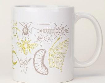 Insect Mug | Ceramic Coffee Mug, Entomology, Bug Mug, Teacher Gift, Gardener Gift, Biology Gift, Botanical, Hercules beetle, butterfly