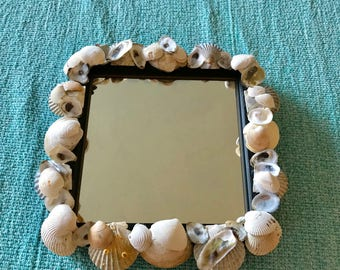 """9"""" x 9"""" Sea Shell Mirror Made with Shells from Cape Cod Great for Beach Cottage Decorating and Coastal Decor"""