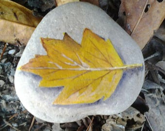 Leaf on a pebble