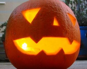 Jack O Lantern Pumpkin Heirloom Seeds Non GMO Gardening