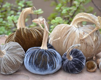 Set of Five Neutral Silk Velvet Pumpkins and Acorns with Real Stems