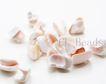 40 Pieces of  Shell Beads (T-193)