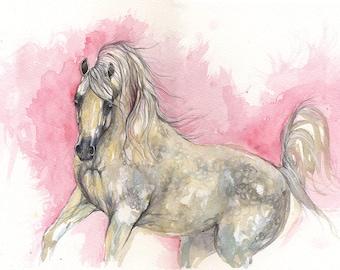 Arabian horse, equine art, horse portrait, equestrian, cheval, original watercolor painting