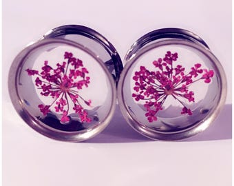 Purple lace flower plugs!