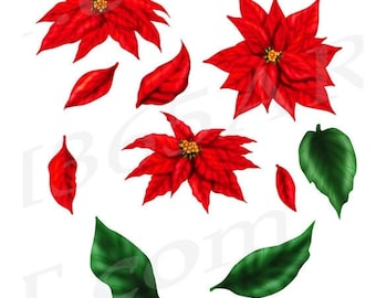 50% OFF Poinsettia Clip art Clipart, Red Poinsettia, DIY, Christmas Flowers, Christmas Clipart, Flower Invitation, Download, Commercial